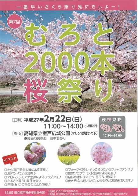 2,000本桜.jpg