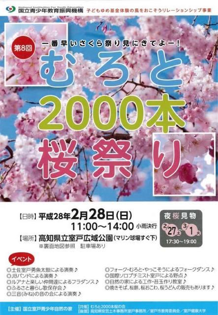 二千本桜1.jpg