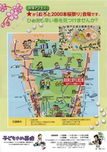 二千本桜2.jpg