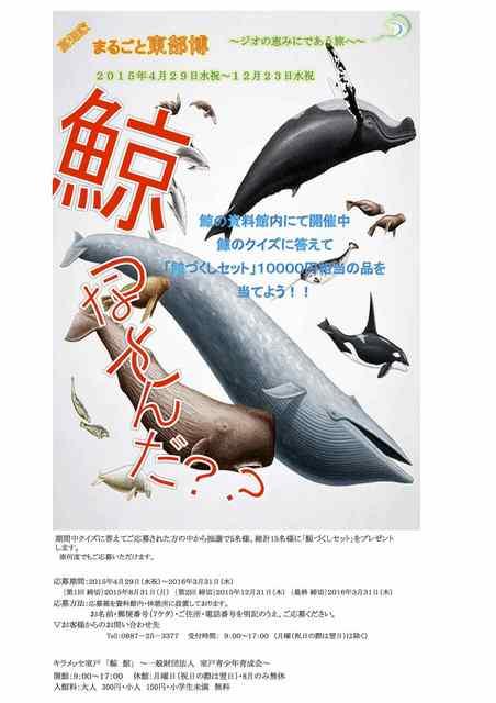 鯨館イベント Sheet1 のコピー 2.jpg